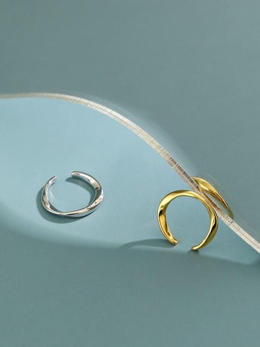 Dak Phoenix 925 Sterling Silver Irregular Minimalist Stud Earring[Single] 1